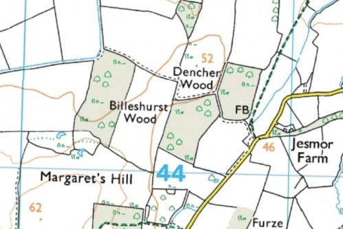 Billeshurst Wood