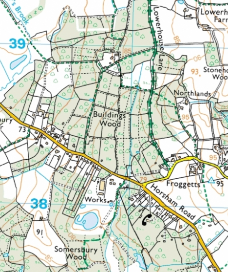 Billeshurst Wood and surrounding area, from OS Explorer map (copyright Ordnance Survey, not mine - reproduced via http://www.bing.com/maps/ without permission but with the utmost respect...)