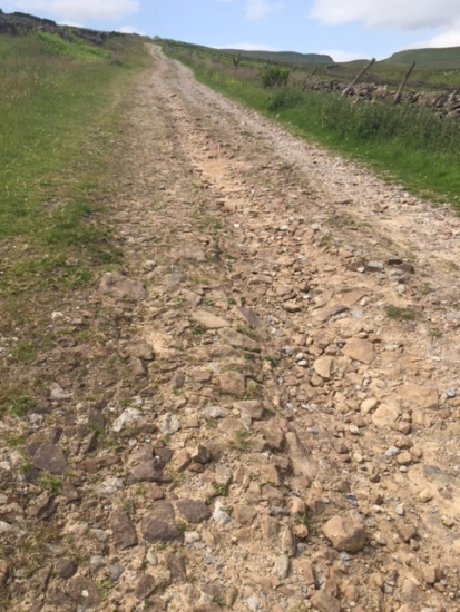 Cam High Road, a Roman road running down into Wensleydale. Not sure if the present stony surface is what's left of Roman-era metalling, guess it could be?