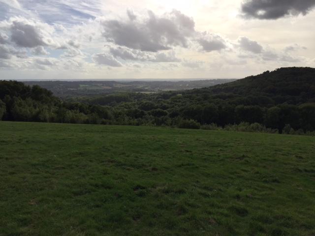 ockley-view